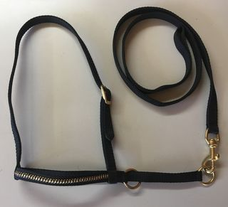 Halter - Show Set - Calf with Gold Braided Noseband