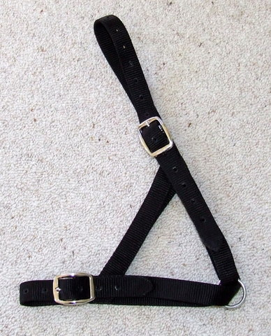 Halter - Cow Tethering